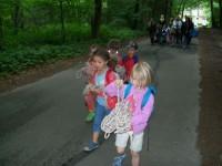 Seile werden in den Wald getragen